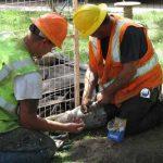 Altamonte Springs Water Pipe Leaks: Causes, Repairs and Fixes